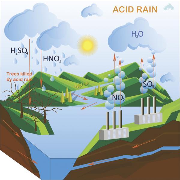 consecuencias de la lluvia ácida