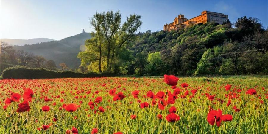 Primavera en España 3