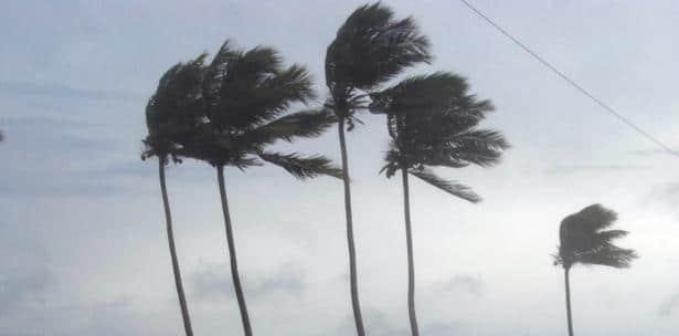 viento alisio