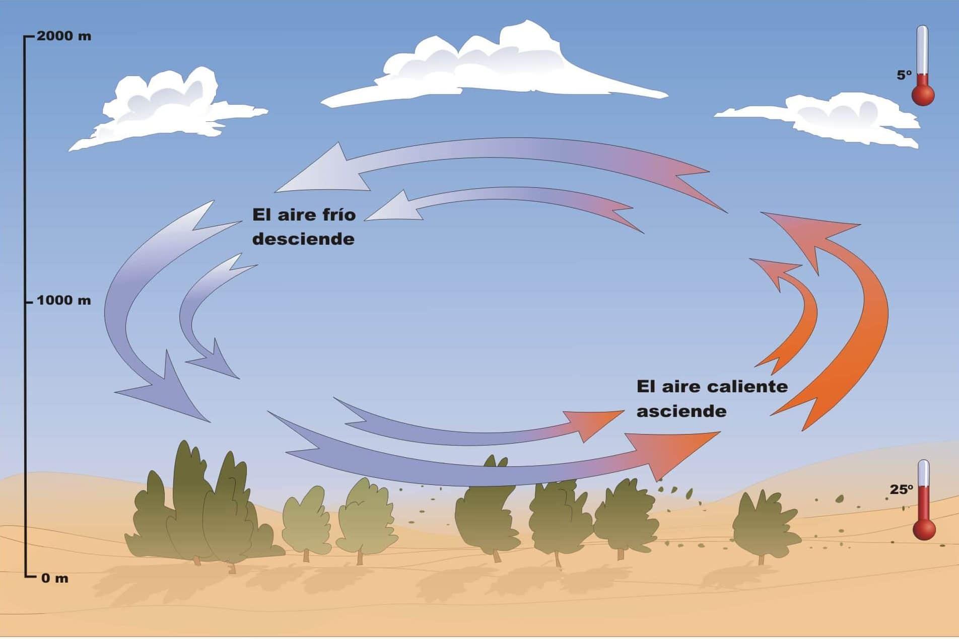 tipos de vientos