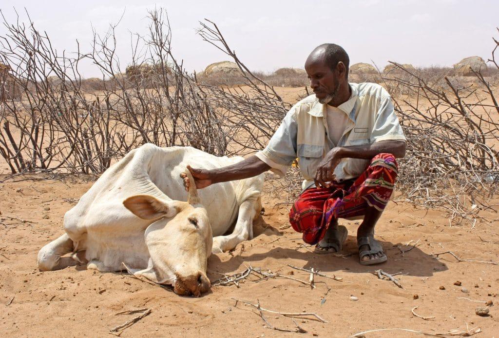 Sequia en Africa