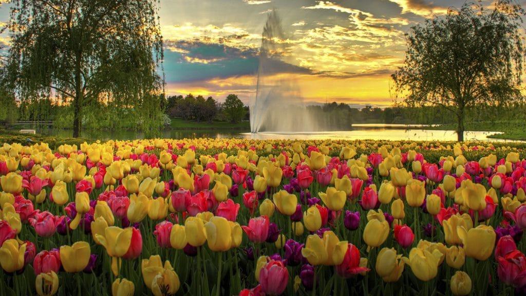 estaciones del año en primavera