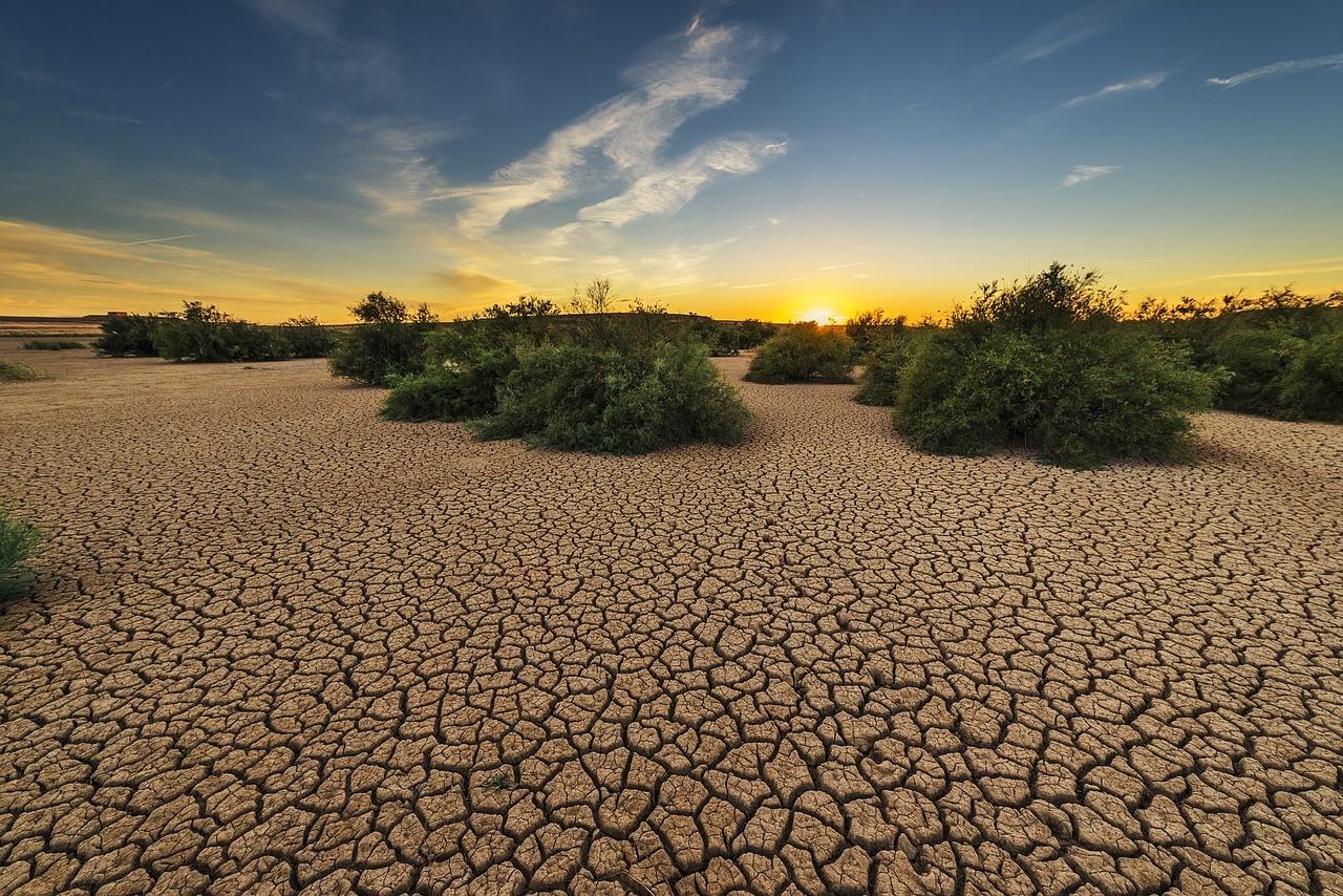 degradacion del suelo