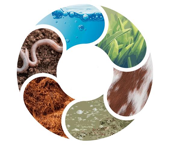 propiedades biológicas del suelo
