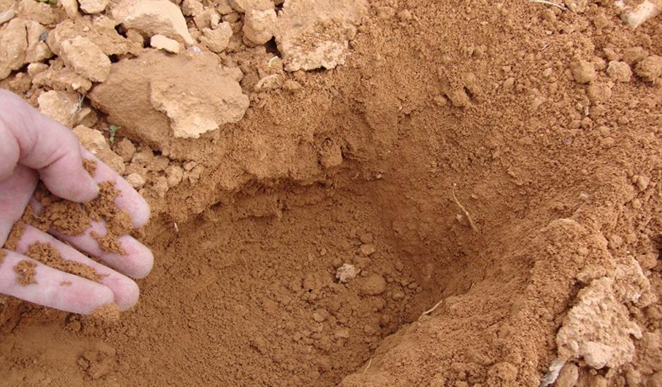 suelos arcillosos